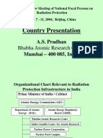 Appendix 10b India Power Point Presentationppt4176
