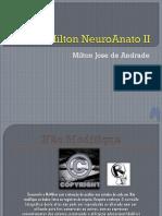McMilton NeuroAnato II