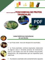 manejoposcosechadefrutos-100825131529-phpapp01