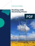 Dealing with Electricity Prices-Huurman.pdf