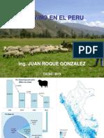 LOS OVINOS EN EL PERU.ppt