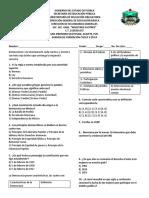 Examen BV FCE.pdf