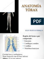Clase Nº 4. Anatomia Torax..pdf