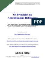 os_principios_da_aprendizagem_relampago.pdf