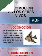 locomocin-161209221430.ppt