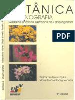 Botânica Organografia.pdf