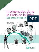 Promenades Dans Le Paris de La Folie Les Êtres Et Les Lieux