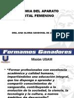 2.-Anatomia Del Aparato Genital Femenino