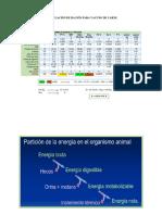 FORMULACION-DE-LA-RACION-2016-Grecia.docx