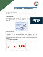 tecnicasdeinmunodiagnostico-121116071424-phpapp01.docx