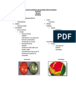 Clasificacion Taxonomica de Bacteria Fitopatogenas