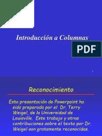 Columnas Cortas.ppt