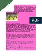 Proyecto Limon 2