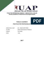Trabajo Academico Practicas Preproesionales II Jaime Alburqueque Ipanaque