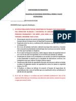 Sistema de gestion de seguridad y salud ocupacional