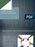 Organização Fluxo e Transformação