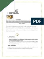Resumen Acto Juridico