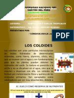 edafología COLOIDES