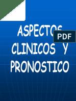 Tumores mamarios - Tratamiento (Col. de Veterinarios).pdf