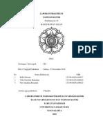 laporan praktikum farmasi klinik