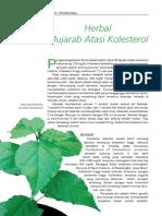 Herbal Mujarab Atasi Kolesterol