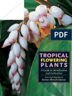 Tropical flowering plant