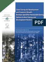 Kammen Bailis Herzog UNDP Biomass