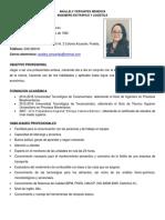 Curriculum Vitae Ing Anallelycervantes