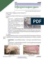 បច្ចេកទេសចិញ្ចឹមជ្រូកជាលក្ខណៈគ្រួសារ(Domesticate pig raising)
