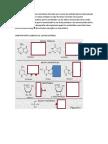 Los ácidos nucleicos.docx