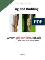 Grafting Gb Grafting