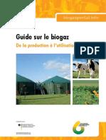 finalweb-leitfadenbiogas-fr-20130503.pdf