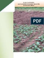 BISSAP_Business plan urban tomato production Porto Novo Benin.pdf