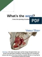 VB2014-Anatomy-Etymology-eBook.pdf