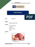 8_INFORME_PROTEINAS_2013.docx