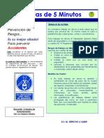Charla - Trabajos en altura.pdf