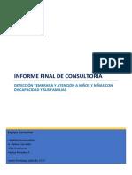 DISC-Prod 6 Informe final consultoria discapacidad.pdf
