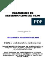 1113064142.Mecanismos de Determinacion Del Sexo 2015