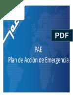 PAE  JEC.pdf