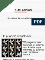 Principio Del Palomar 32875
