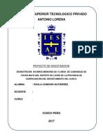 Proyecto de Pacramayo