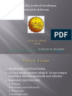 K14 - Muscle Tissue (Physio)