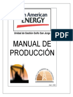 Manual PAE Completo