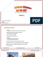 Estándares Minimos SG-SST