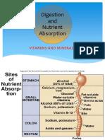 K13 - digest vitamin, mineral, digestive block.mei 2015.joko.pptx