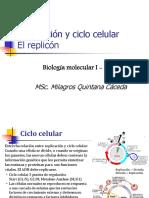 Clase 4 Replicación y Ciclo Celular. El Replicón