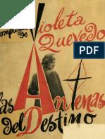 El Ángel Del Peregrino