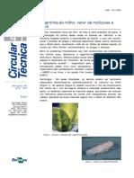 cigarrinha-do-milho-vetor-de-molicutes-e-virus.pdf
