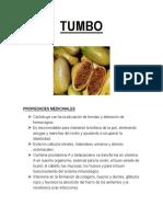 TUMBO.docx