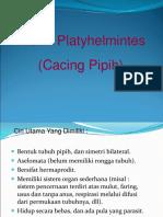 platyhelminthes-nemathelminthes